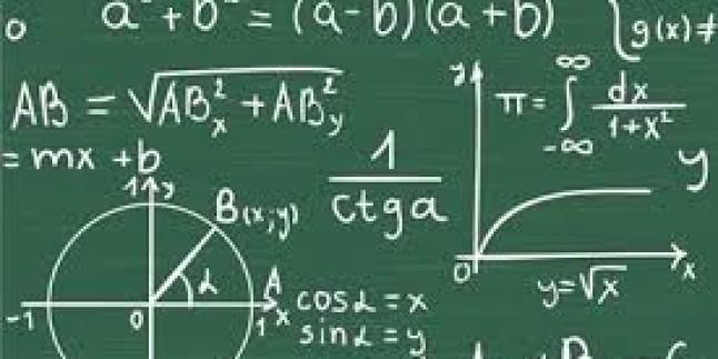 Üniversite Öğrencilerinin Özel Ders Vererek Ek Getiri Kazandıkları Proje; ozeldersalani.com