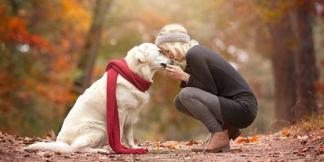 Her Köpek Sahibinin Bilmesi Gereken 12 Bilgi