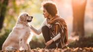 Köpeklerde Kuduz Hakkında Bilmeniz Gerekenler