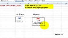 ExcelHücreye dosya & resim ekleme nasıl yapılır