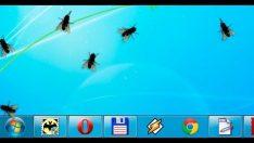 Bilgisayar ekran'da sinek şakası
