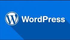 WordPress de açılır pencere oluşturma