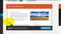 WordPress Tema Nasıl Silinir?