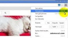 Youtube videolarını önizleme eklentisi