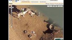 Google Maps haritasını website'ye ekleme