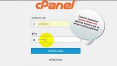 Cpanel SQL phpMyAdmin yedeği nasıl alınır