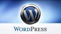 SQL den Worpress varsayılan tema nasıl değişir