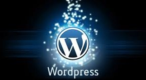 WordPress wp-content/uploads klasörünü gizleme