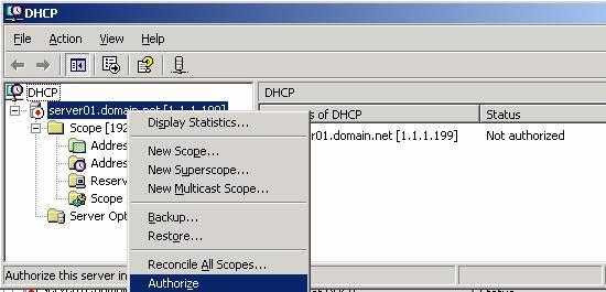 Authorized Dhcp Server Video Anlatım