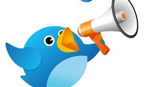 Twitter açıklama özelliği nedir