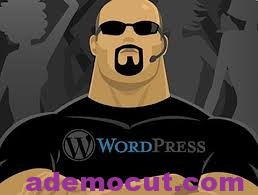 WordPress Security plugins – WordPress Güvenlik Eklentisi