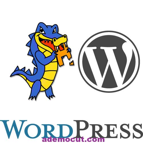 [ Video'lu ] WordPress Nasıl Kurulur