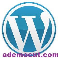 WordPress Sayfalar Nedir