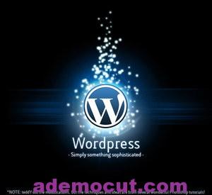 WordPress de içe aktar-Dışa Aktar Nasıl Yapılır?