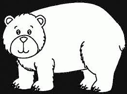 Kutup Ayılarını Canlı Kameradan İzleyin