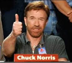 Find Chuck Norris – Chuck Norris Gören Varmı..?