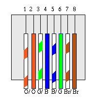 rj45 kablo özelliği