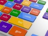 Domain Uzantıları ( com , net ) Anlamı Nedir?